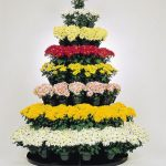 706 tree rack with mums