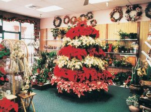decorative plant merchandising displays