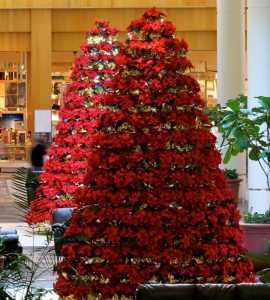 holiday display tree in mall