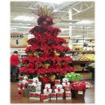 reatail display for plants poinsettias